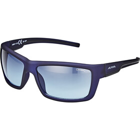 Alpina Slay Brille nightblue matt
